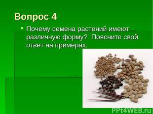 Вопрос 4 Почему семена растений имеют различную форму? Поясните свой ответ на пр