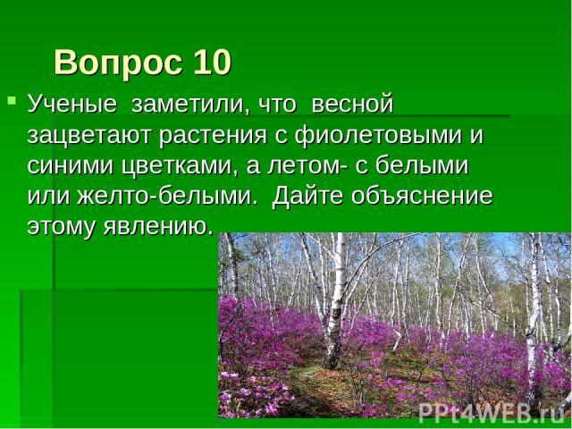 Вопрос 10 Ученые заметили, что весной зацветают растения с фиолетовыми и синими цветками, а летом- с белыми или желто-белыми. Дайте объяснение этому явлению.