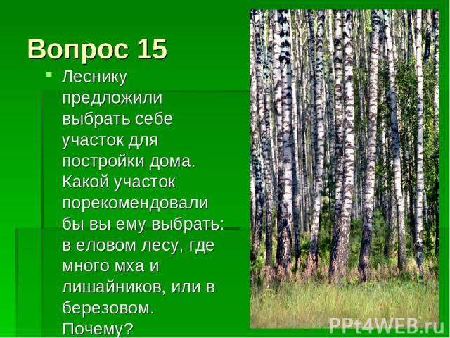 Вопрос 15 Леснику предложили выбрать себе участок для постройки дома. Какой участок порекомендовали бы вы ему выбрать: в еловом лесу, где много мха и лишайников, или в березовом. Почему?