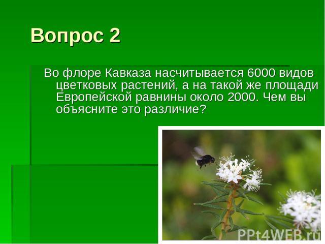 Вопрос 2 Во флоре Кавказа насчитывается 6000 видов цветковых растений, а на такой же площади Европейской равнины около 2000. Чем вы объясните это различие?