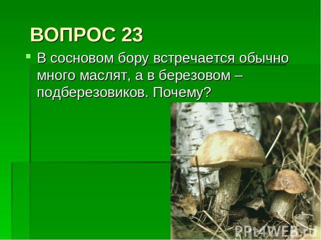 ВОПРОС 23 В сосновом бору встречается обычно много маслят, а в березовом – подберезовиков. Почему?