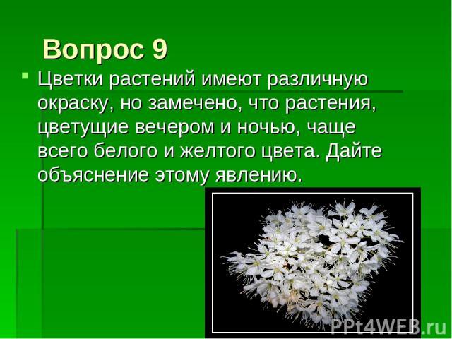 Вопрос 9 Цветки растений имеют различную окраску, но замечено, что растения, цветущие вечером и ночью, чаще всего белого и желтого цвета. Дайте объяснение этому явлению.