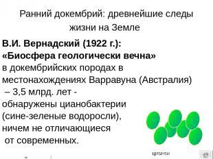 Эукариоты (ядерные) - организмы, клетки которых содержат оформленные ядра. К эук