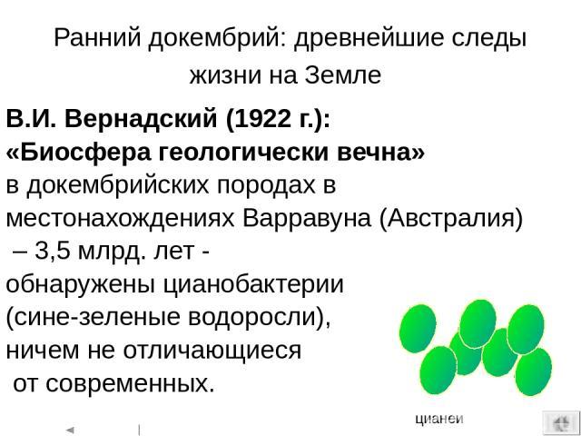Эукариоты (ядерные) - организмы, клетки которых содержат оформленные ядра. К эукариотам относятся все высшие животные и растения, а также одноклеточные и многоклеточные водоросли, грибы и простейшие.  1. Предковые прокариотические клетки. 2. Предэу…