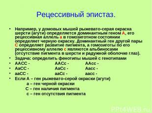 Рецессивный эпистаз. Например, у домовых мышей рыжевато-серая окраска шерсти (аг