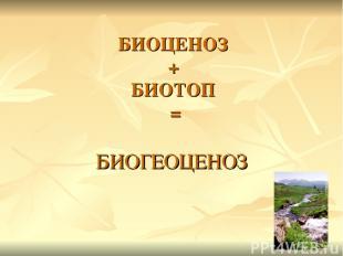 БИОЦЕНОЗ + БИОТОП = БИОГЕОЦЕНОЗ