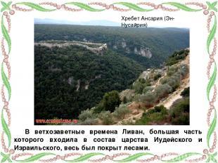 В ветхозаветные времена Ливан, большая часть которого входила в состав царства И