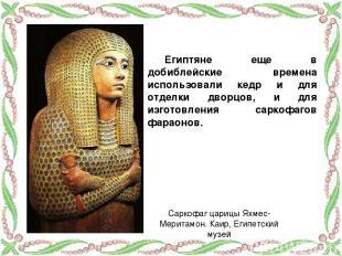Египтяне еще в добиблейские времена использовали кедр и для отделки дворцов, и д