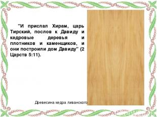 """""""И прислал Хирам, царь Тирский, послов к Давиду и кедровые деревья и плотников и"""