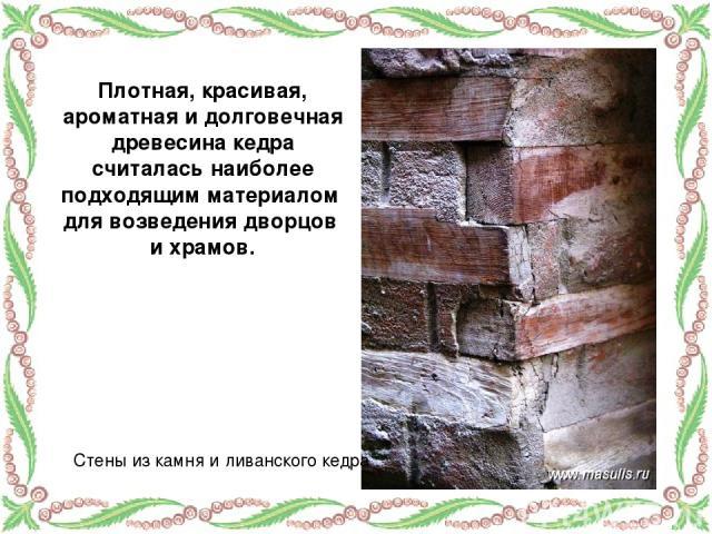 Плотная, красивая, ароматная и долговечная древесина кедра считалась наиболее подходящим материалом для возведения дворцов и храмов. Стены из камня и ливанского кедра