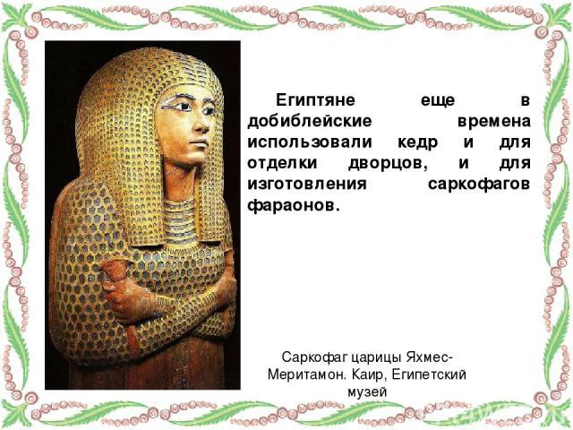Египтяне еще в добиблейские времена использовали кедр и для отделки дворцов, и для изготовления саркофагов фараонов. Саркофаг царицы Яхмес-Меритамон. Каир, Египетский музей