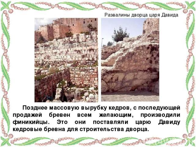 Позднее массовую вырубку кедров, с последующей продажей бревен всем желающим, производили финикийцы. Это они поставляли царю Давиду кедровые бревна для строительства дворца. Развалины дворца царя Давида