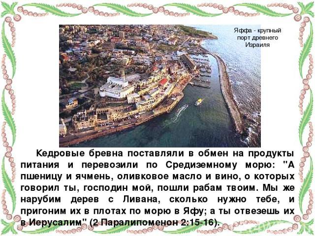 Кедровые бревна поставляли в обмен на продукты питания и перевозили по Средиземному морю: