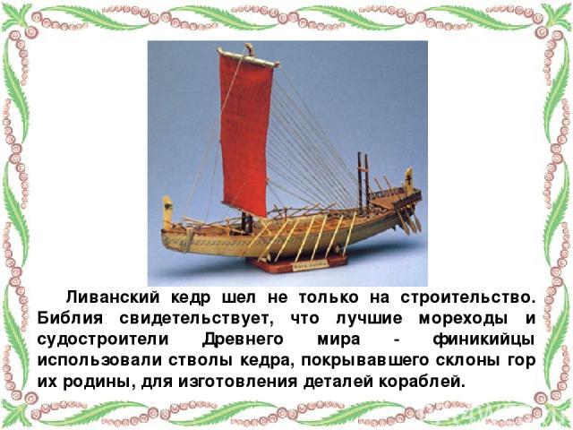 Ливанский кедр шел не только на строительство. Библия свидетельствует, что лучшие мореходы и судостроители Древнего мира - финикийцы использовали стволы кедра, покрывавшего склоны гор их родины, для изготовления деталей кораблей.