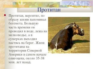 Протитан Протитан, вероятно, по образу жизни напоминал бегемота. Большую часть в