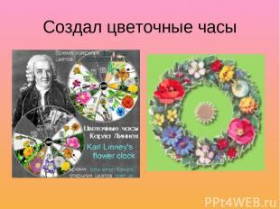 Создал цветочные часы
