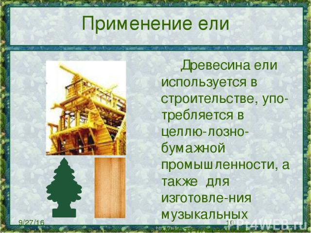 Применение ели Древесина ели используется в строительстве, упо-требляется в целлю-лозно-бумажной промышленности, а также для изготовле-ния музыкальных инструментов, тары, шпал, телеграфных столбов.