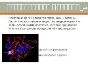 Регуляторная функция. Некоторые белки являются гормонами. Гормоны - биологически