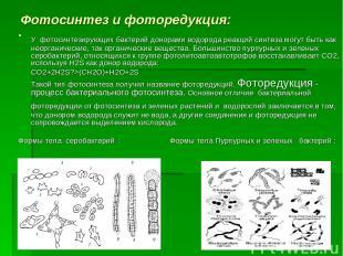 Фотосинтез и фоторедукция: У фотосинтезирующих бактерий донорами водорода реакци