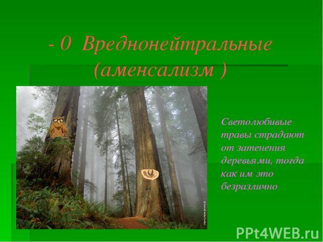 - 0 Вреднонейтральные (аменсализм ) Светолюбивые травы страдают от затенения деревьями, тогда как им это безразлично