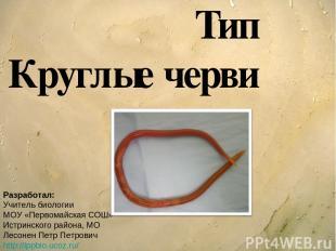 Тип Круглые черви Разработал: Учитель биологии МОУ «Первомайская СОШ» Истринског