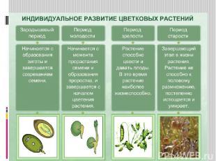 Маркова Лайма Валдисовна, учитель химии и биологии Усть-Язьвинской МСОШ Краснови