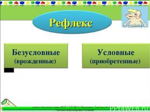 учитель биологии и химии МОУ СОШ №19 г.Мичуринска Тамбовской области Светлана Ал