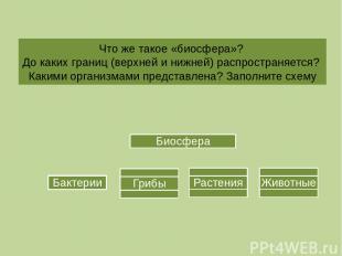 Что же такое «биосфера»? До каких границ (верхней и нижней) распространяется? Ка
