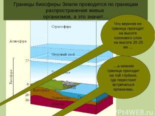 Границы биосферы Земли проводятся по границам распространения живых организмов,