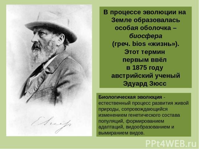 В процессе эволюции на Земле образовалась особая оболочка – биосфера (греч. bios «жизнь»). Этот термин первым ввёл в 1875 году австрийский ученый Эдуард Зюсс Биологическая эволюция - естественный процесс развития живой природы, сопровождающийся изме…