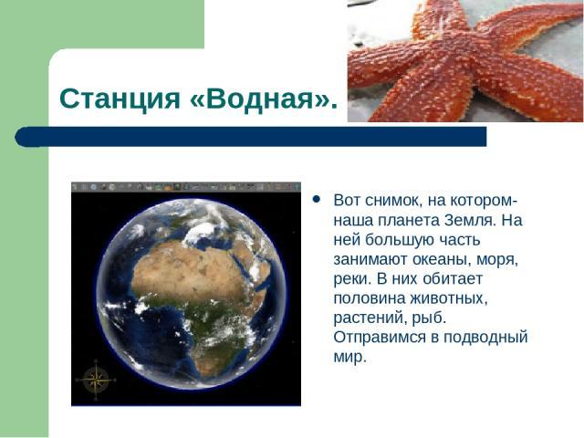 Станция «Водная». Вот снимок, на котором- наша планета Земля. На ней большую часть занимают океаны, моря, реки. В них обитает половина животных, растений, рыб. Отправимся в подводный мир.