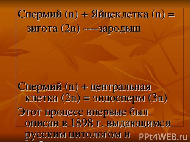 Спермий (n) + Яйцеклетка (n) = зигота (2n) ----зародыш Спермий (n) + центральная клетка (2n) = эндосперм (3n) Этот процесс впервые был описан в 1898 г. выдающимся русским цитологом и эмбриологом С.Г. Навашиным.