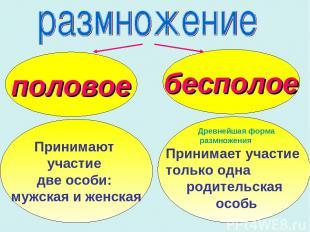 половое бесполое Принимают участие две особи: мужская и женская Древнейшая форма