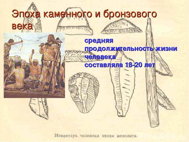 Эпоха каменного и бронзового века средняя продолжительность жизни человека составляла 18-20 лет