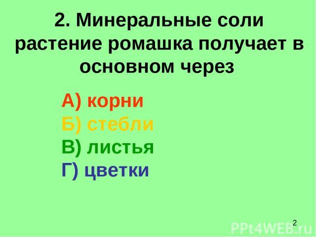 2. Минеральные соли растение ромашка получает в основном через А) корни Б) стебли В) листья Г) цветки