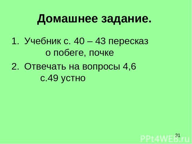 Домашнее задание. Учебник с. 40 – 43 пересказ о побеге, почке Отвечать на вопросы 4,6 с.49 устно