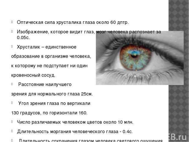 Оптическая сила хрусталика глаза около 60 дптр. Изображение, которое видит глаз, мозг человека распознает за 0.05с. Хрусталик – единственное образование в организме человека, к которому не подступает ни один кровеносный сосуд. Расстояние наилучшего …