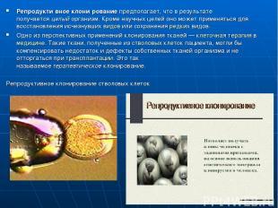 Репродукти вное клони рованиепредполагает, что в результате получаетсяцелыйор
