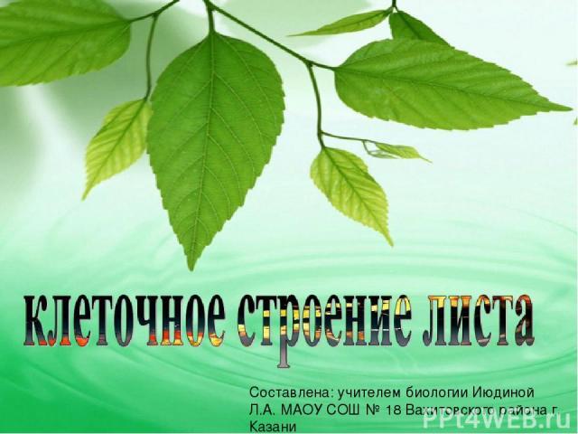 Составлена: учителем биологии Июдиной Л.А. МАОУ СОШ № 18 Вахитовского района г. Казани