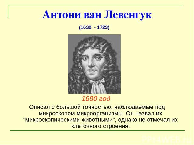 Антони ван Левенгук 1680 год Описал с большой точностью, наблюдаемые под микроскопом микроорганизмы. Он назвал их