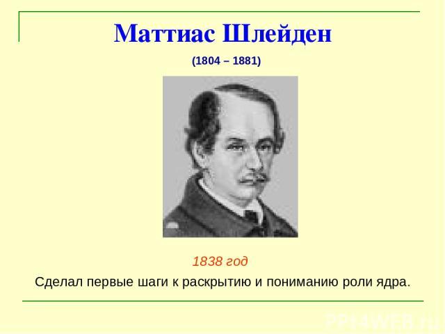 Маттиас Шлейден 1838 год Сделал первые шаги к раскрытию и пониманию роли ядра. (1804 – 1881)