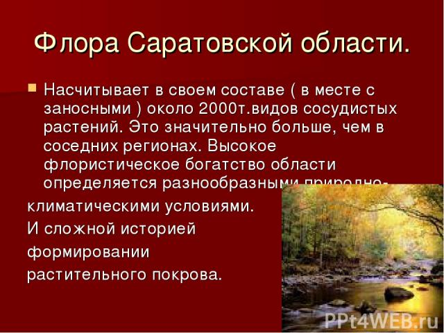 Флора Саратовской области. Насчитывает в своем составе ( в месте с заносными ) около 2000т.видов сосудистых растений. Это значительно больше, чем в соседних регионах. Высокое флористическое богатство области определяется разнообразными природно- кли…