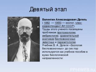 Девятый этап Валентин Александрович Догель ( 1882 — 1955)— зоолог, член-коррес