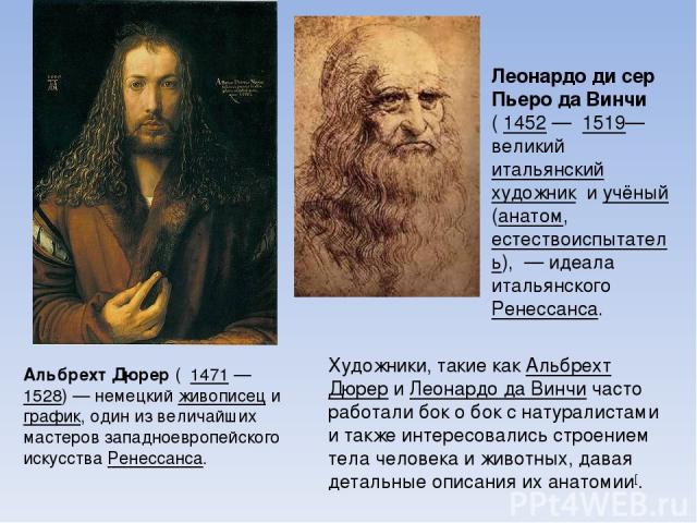 А льбрехт Дю рер ( 1471 — 1528) — немецкий живописец и график, один из величайших мастеров западноевропейского искусства Ренессанса. Леона рдо ди сер Пьеро да Ви нчи ( 1452— 1519— великий итальянский художник и учёный (анатом, естествоиспытатель), …