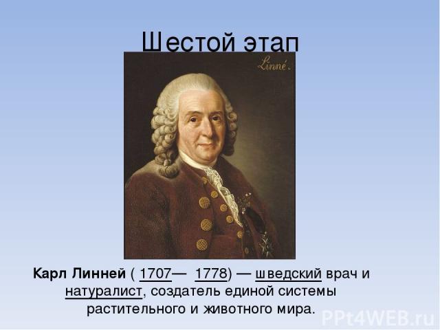 Шестой этап Карл Линне й ( 1707— 1778)— шведский врач и натуралист, создатель единой системы растительного и животного мира.