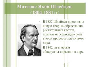 Маттиас Якоб Шлейден (1804-1881гг) В 1837 Шлейден предложил новую теорию образов