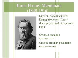 Илья Ильич Мечников (1845-1916) Биолог, почетный член Императорской Санкт -Петер
