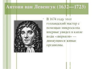 Антони ван Левенгук (1632—1723) В 1674 году этот голландский мастер с помощью ми