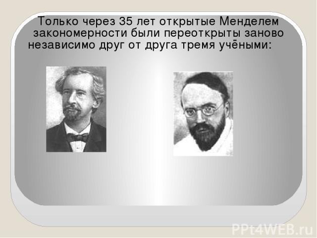 Только через 35 лет открытые Менделем закономерности были переоткрыты заново независимо друг от друга тремя учёными: Г. де Фриз К. Корренс