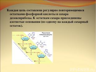 Каждая цепь составлена регулярно повторяющимися остатками фосфорной кислоты и са